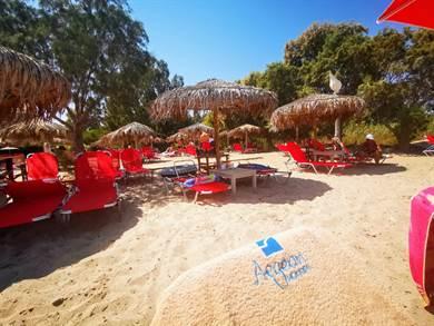 E' il secondo anno che ci affidiamo a Juna per le nostre vacanze in Grecia e come sempre tutto è stato perfetto