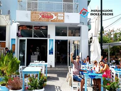 Taverna Flamos Kos Town