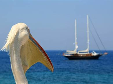 Come arrivare a Mykonos - Isole Greche