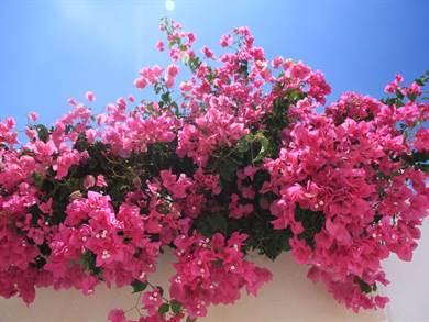 NAXOS: Cose da vedere a Naxos