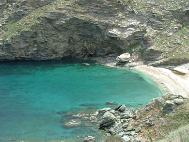 Syneti Beach foto by www.andros-guide.com